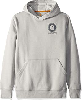 Carhartt Men`s Force Delmont Graphic Hooded Sweatshirt (Regular and Big & Tall Sizes)