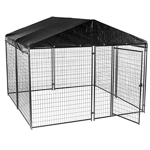 Outdoor Dog Run Amazon