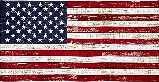"Timeless Treasures American Pride 23.5"" American Flag Panel Flag, Fabric"