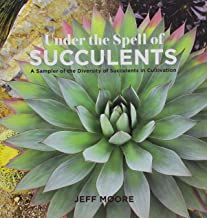 Best succulents online order Reviews