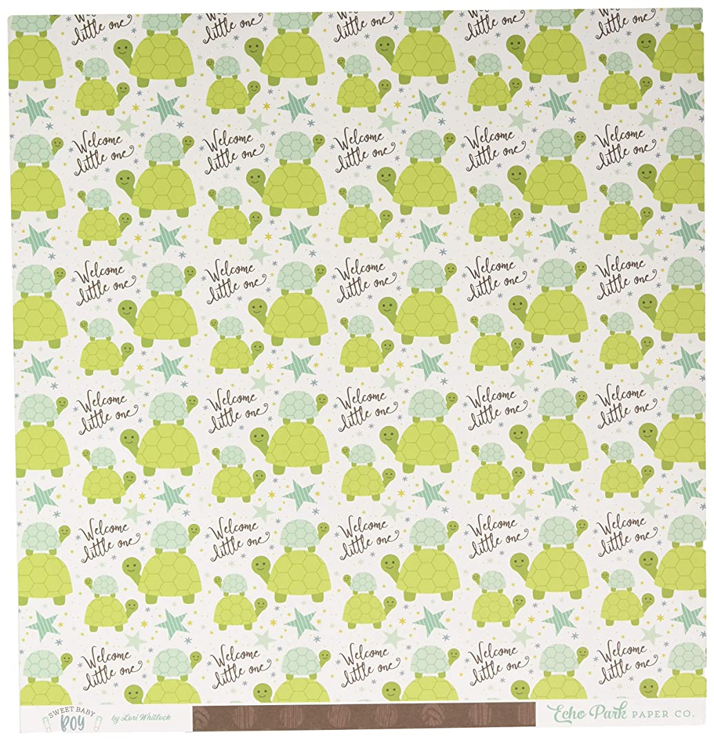 Echo Park Paper Little One, Turtles/Brown Dots Sweet Baby Boy Double-Sided Cardstock 12