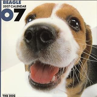 Beagle 2007 Calendar (Artlist Collection: The Dog)