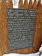 Best red roses for me lyrics Reviews