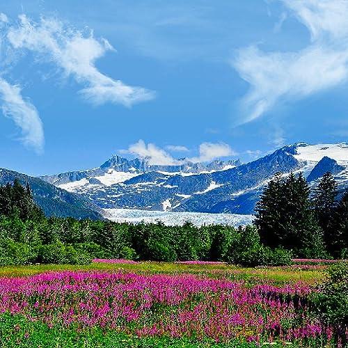 Alaska Travel App