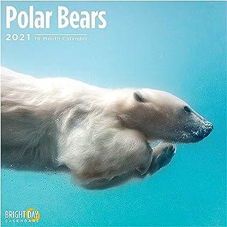 Bright Day Calendars 2021 Polar Bears Wall Calendar by Bright Day, 12 x 12 Inch, Cute Arctic Snow Animals