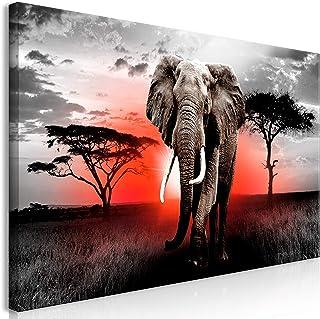 murando Cuadro Mega XXXL Elefante 170x85 cm Cuadro en Lienzo en Tamano XXL Estampado Grande Gigante Imagen para Montar por uno Mismo Decoración De Pared Impresión DIY Paisaje Africa g-C-0054-ak-h
