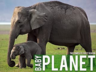 Best tv animal planet Reviews