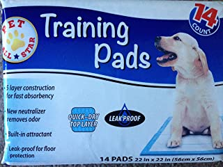 Pet All Stars Training Pad