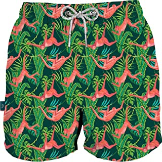 Swimwear for Men Short French Cut Swim Trunk Quick Dry Bathing Suit. Assorted Styles and Colors