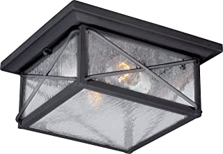 Nuvo Lighting 60/5626 Wingate Flush 2 Light 60-watt A19 Outdoor Close to Ceiling Porch and Patio Lighting with Clear Seeded Glass, Textured Black