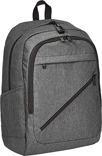 AmazonBasics Anti-Theft Water Resistant Backpack for Laptops up to 17-Inches - Black