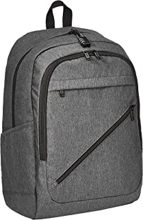 Amazon Basics Anti-Theft Water Resistant Backpack for Laptops