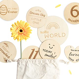 funny supply Monthly Milestone Cards Set of 14 Reversible Engraved Wooden Discs Records..