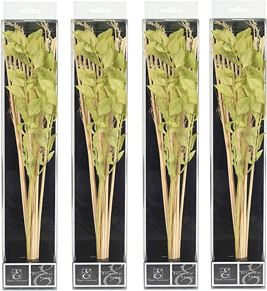 Hosley Set Of 4 12 5 High Botanical Diffuser Reeds Green Natural Ideal Gift For Weddings House Warming Home Office Reiki Meditation Settings O8