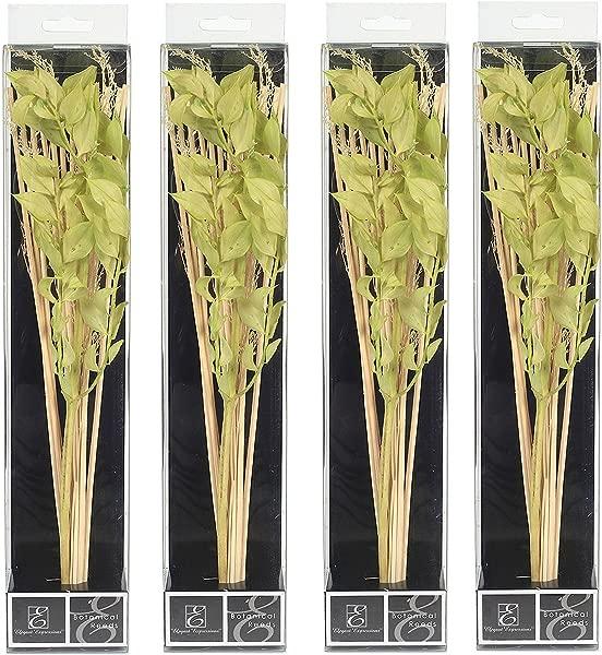 Hosley 一套 4 12 5 高植物扩散器芦苇绿色天然理想礼物婚礼房屋取暖家庭办公室灵气冥想设置 O8