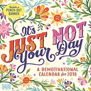 It`s Just Not Your Day Wall Calendar 2018