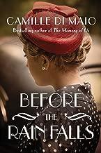 Before the Rain Falls: A Novel