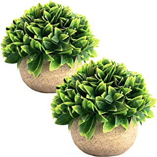 Set of 2 Artificial Succulent Plants with Pots – Realistic Topiary Greenery Mini Potted Faux Plant Arrangements | for Home Office Decor, Dorm Room, Bathroom, Kitchen Table Centerpieces