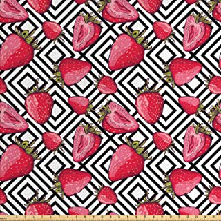Ambesonne Fruits Fabric by The Yard, Strawberries on Minimalist Chevron Striped Pattern with Juicy Food Feminine Image, Decorative Fabric for Upholstery and Home Accents, 1 Yard, White Black