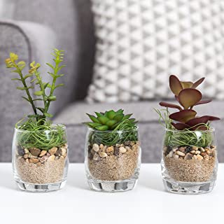 MyGift Artificial Succulent Plants in Clear Glass Pots, Set of 3