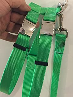 Carter Pet Supply Small Pig (Hog Harness) (Lime Green)