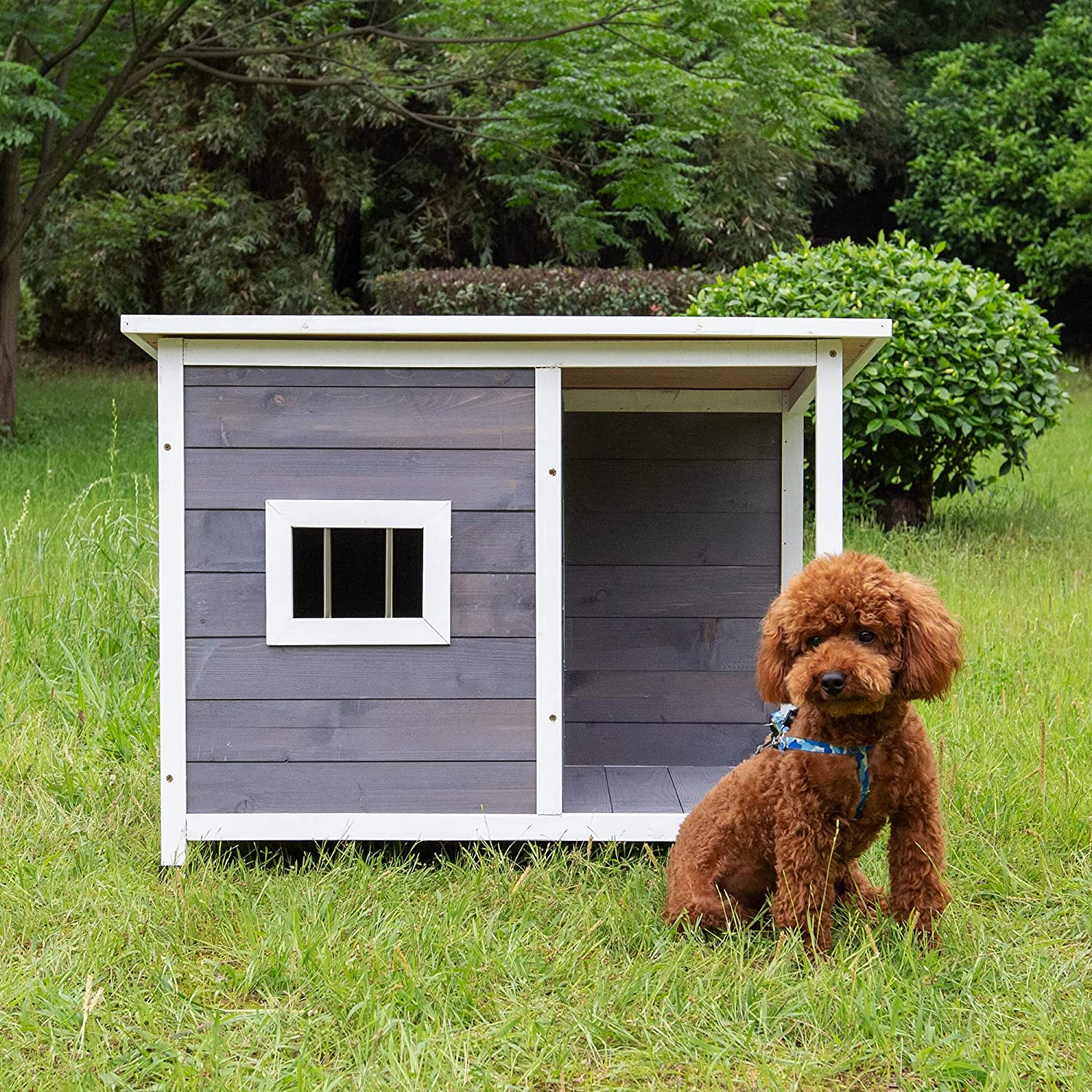 Bitpure Classic Lowest price challenge Outdoor Wooden Dog Max 79% OFF Water and House Resistant Att