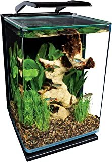 Best Betta Aquarium [2020]