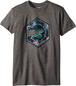 Billabong Kids Access T-Shirt (Big Kids)