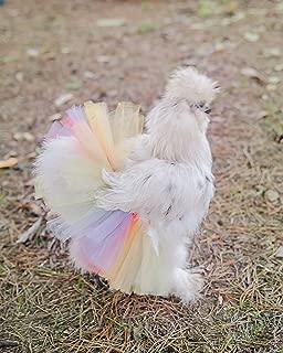 Pastel Rainbow Chicken Tutu