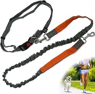 Zenify Hands Free Dog Lead for Running, Walking, Hiking, Canicross Dual Handle Comfortable Waist Belt Leash Band Reflectiv...