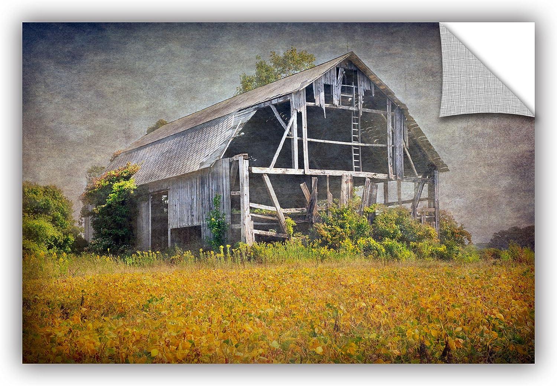 ArtWall Antonio Raggio's Country Barn, Removable Wall Art Mural 16X24