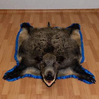 Russian Wild Boar Taxidermy Rug Mount with Head - Wild HOG Mounted PELT, Fur, Skin, Hide for Sale - Real, Decor, LIFESIZE - ST5262