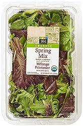 365 Everyday Value, Organic Spring Mix, 16 oz