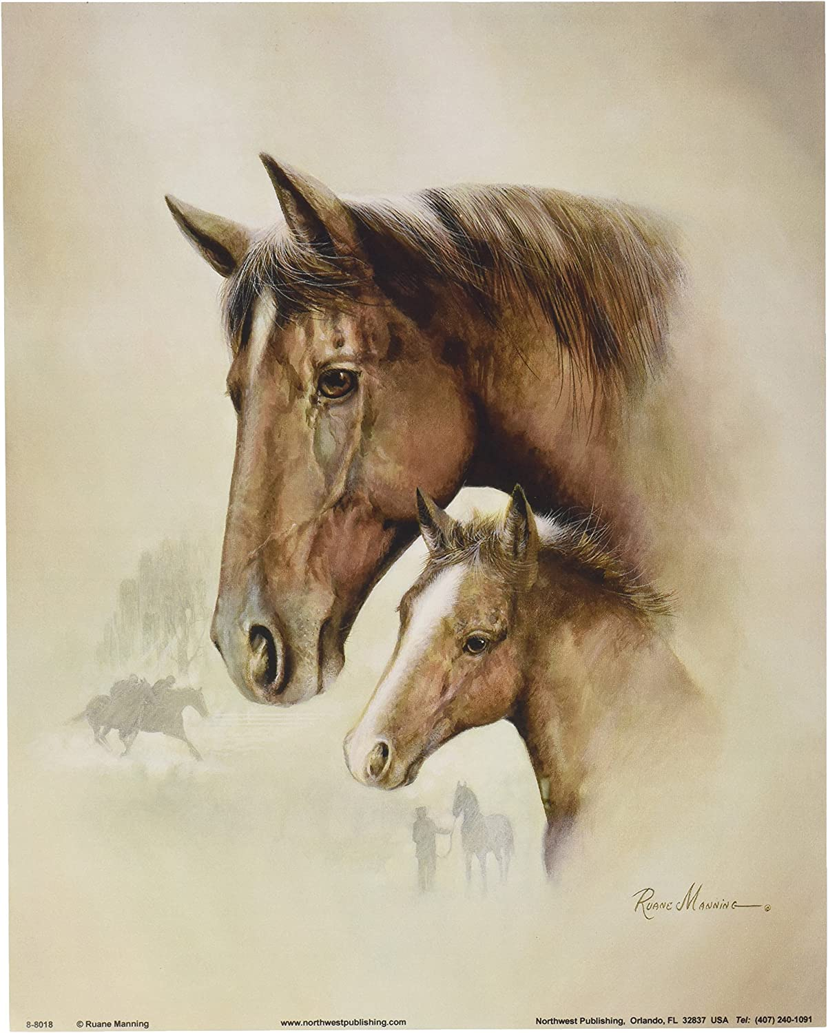 Amazon.com 20 Horse Art Prints Mare Pictures Foal Posters Home ...