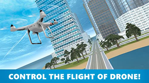 Drone-Flight-Simulator-3D