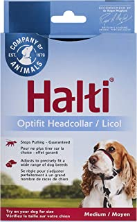 Best The Company of Animals Head Collar Halti Dogs Review