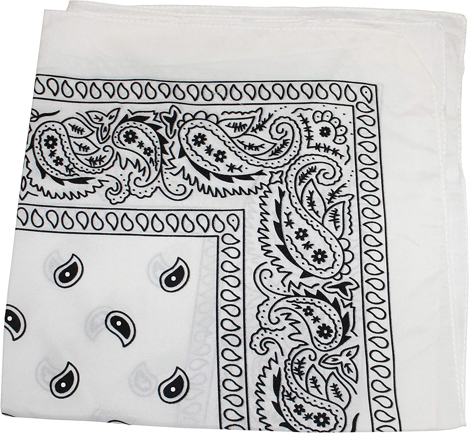 Pack of 48 Paisley Cotton Max 80% OFF Bandanas - Headwraps Bulk Whol Reservation Novelty