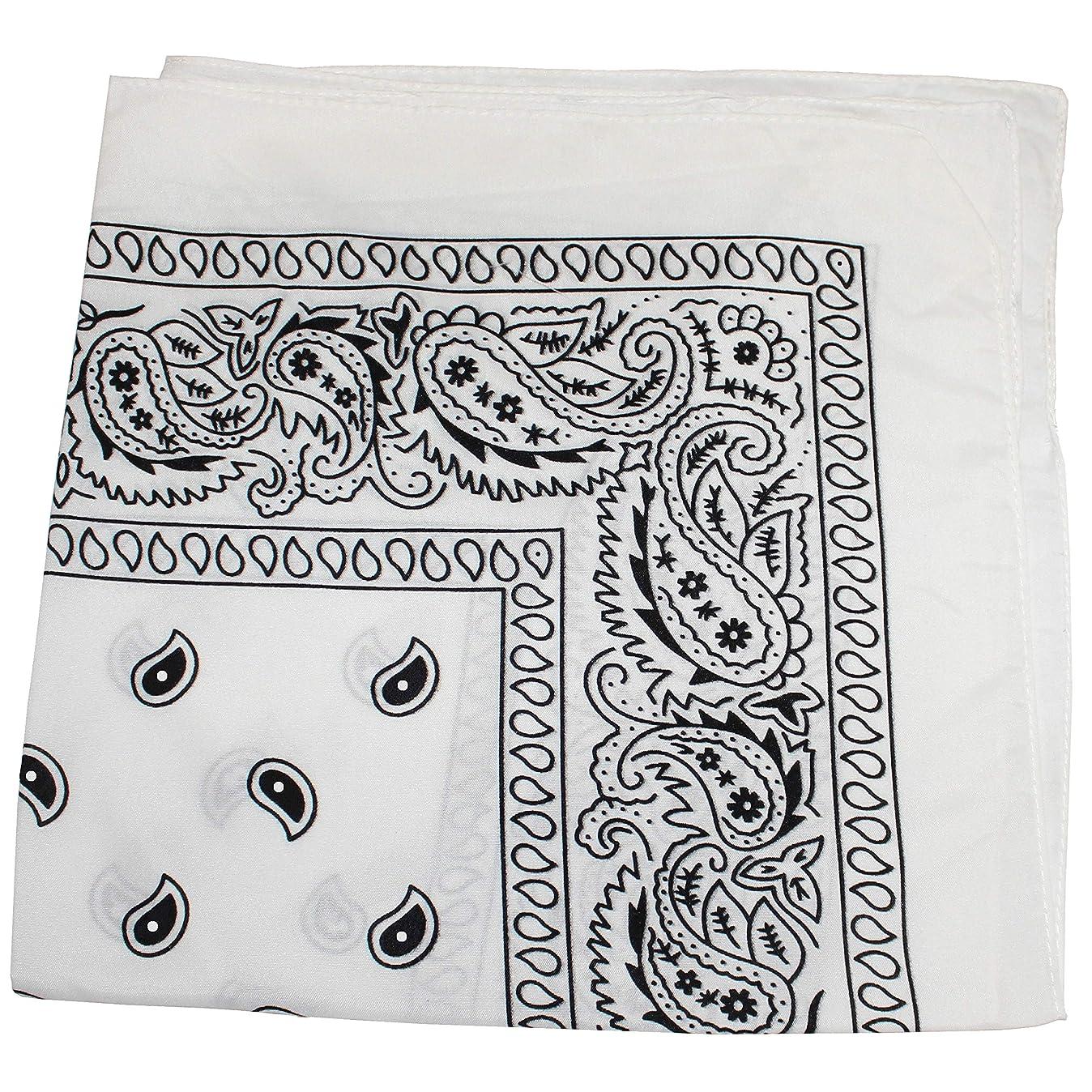 Pack of 48 Paisley 100% Cotton Bandanas Novelty Headwraps - Bulk Wholesale - 22 inches o1436325364
