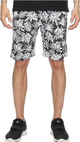Nike SB - SB Dry Shorts Sunday Tourist
