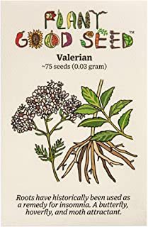 Valerian (Valeriana officinalis) Seeds (~75): Non-GMO, Heirloom, Open Pollinated Seeds from The United States