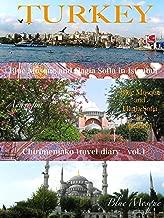 ちりめんじゃこ旅日記 vol.1 トルコ ブルーモスクとアヤソフィア