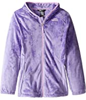 The North Face Kids - Oso 2 Hoodie (Little Kids/Big Kids)