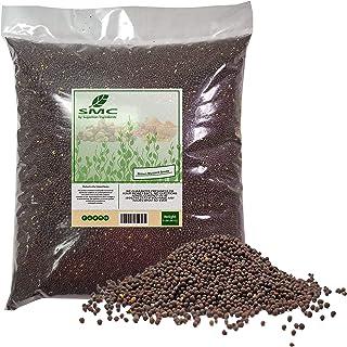 BROWN Mustard Seeds 5 Pound Bulk Bag-Heat Sealed to Maintain Freshness