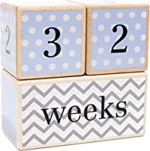 Premium Solid Wood Milestone Age Blocks   Choose from 3 Different Color Styles (Blue)   Baby Age Photo Blocks   Perfect Baby Shower Gift and Keepsake by LovelySprouts