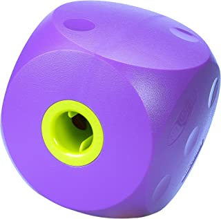 the buster cube dog toy
