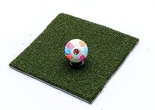 4 Winners Field Hockey Dimple Ball (Rainbow)