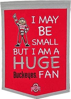 NCAA Ohio State Buckeyes Lil Fan Banner