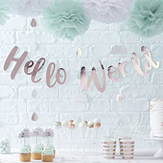 welcome to the world decorations