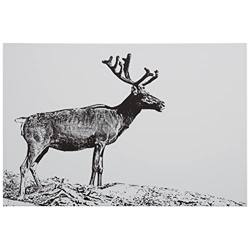 Amazon Brand – Rivet Black and White Canvas Print of Male Deer, 15  x 10