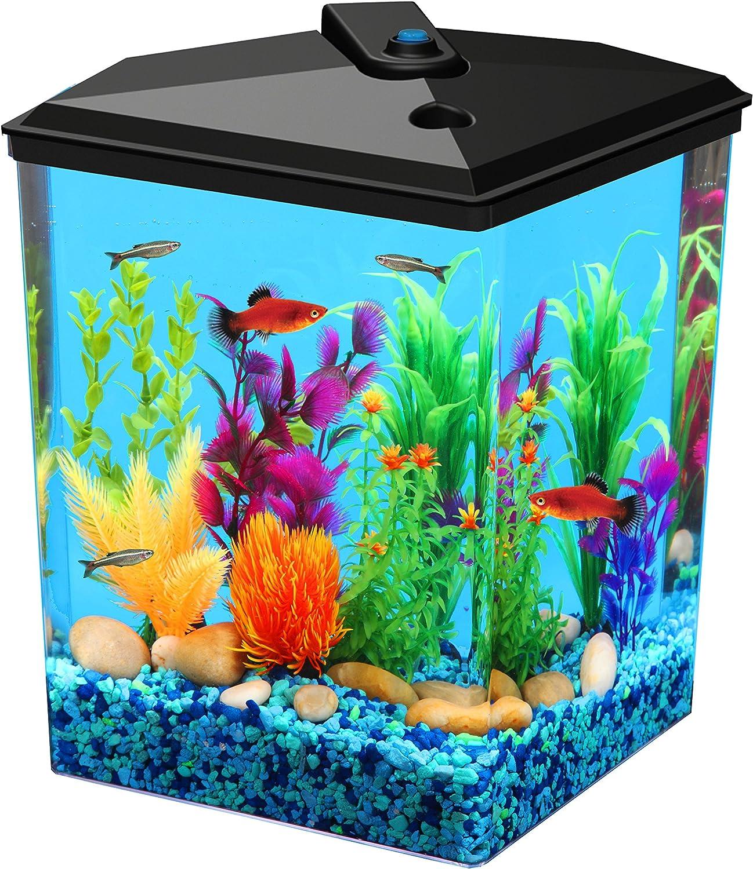 Aquarius Aq25000 Aquarius 2 and 1 2 Corner Tank 2 and 1 2Gallon Aquarium Kit